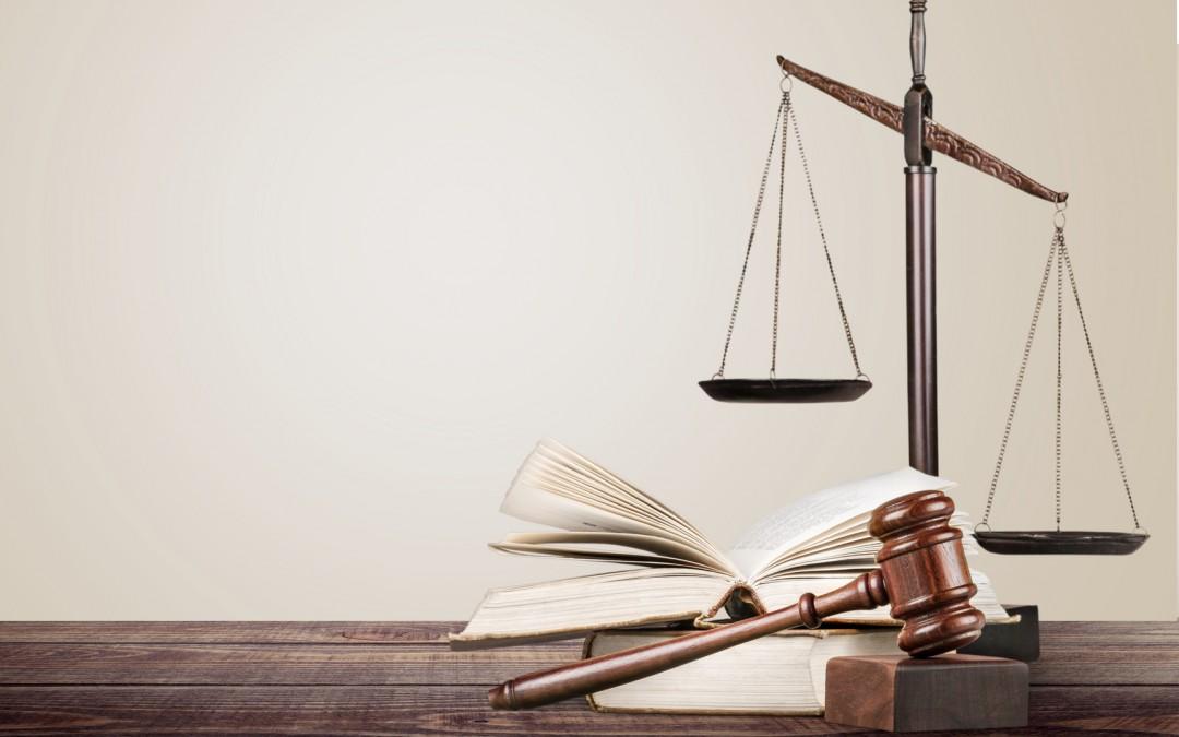 من تطبيقات دولة سيادة القانون في ألمانيا الإتحادية